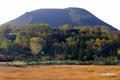 湿原とチセヌプリ