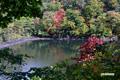 紅葉進む半月湖