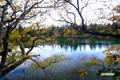 コックリ湖~秋