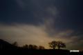 月明かりのサクランボの木と北天
