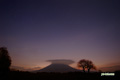 夜明け前のサクランボの木と羊蹄山