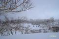 冬の大谷地遠望