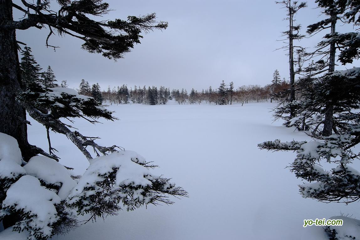 雪原の神仙沼