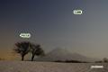 月夜のサクランボの木と木羊蹄山