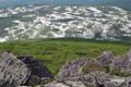 山頂南側の無名湿原