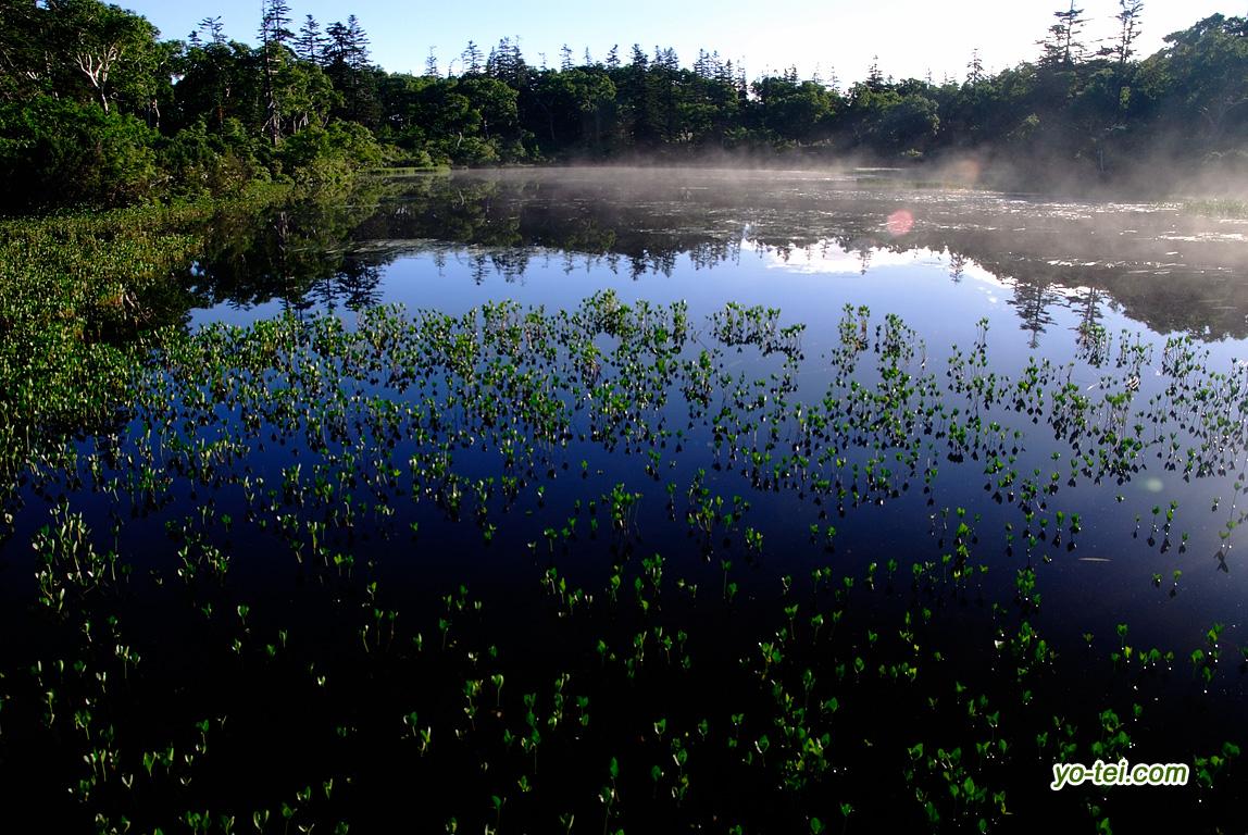 朝陽の神仙沼