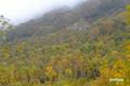 ニセコアンヌプリ北東斜面