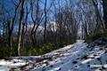 半月湖遊歩道と羊蹄山