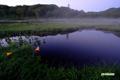 日の出前の湿原