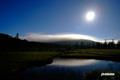 月夜の湿原