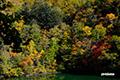 紅葉の半月湖