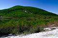 パンケ目国内湿原と目国内岳
