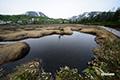 湿原・池塘