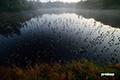神仙沼~陽の出前