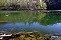 新緑の半月湖