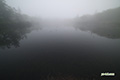 霧の神仙沼