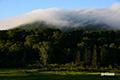雲に覆われたチセヌプリ