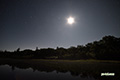月夜~湿原の星空